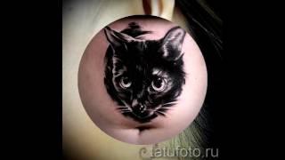 тату черная кошка   примеры фото для статьи про значение татуировка черная кошка