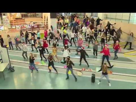 LIPDUB 2014-2015 LICENCES PRO RISLAV-TCCI