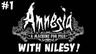 Amnesia: A Machine for Pigs with Nilesy: A Protessional Video