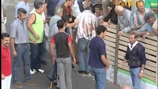 Bull Running Festival Begins in Spain