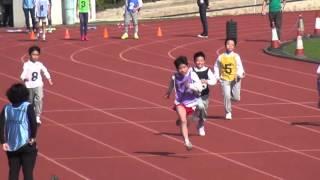2016-1-13保良局陳守仁小學運動會 -  P6 Boy 100m Heat 1