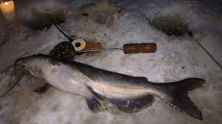 Ловля на мормышку со льда cома. Сургут. Часть 1