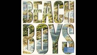 Watch Beach Boys Maybe I Dont Know video