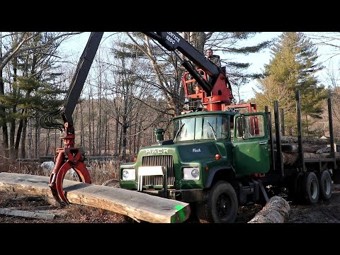Milling White Oak Timber In New England (EP63)