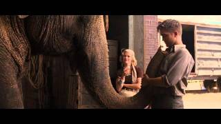 Воды слонам - Известность Роберта Паттисона