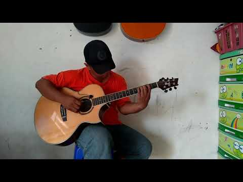 Lily - Alan Walker (fingerstyle cover)