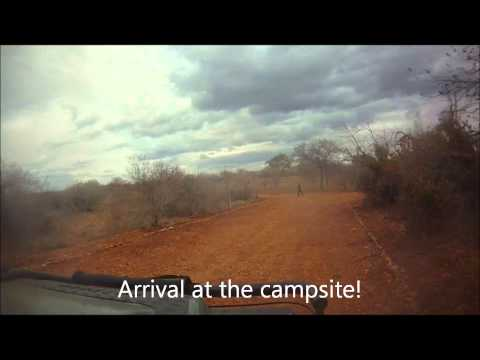 Campismo Aguia Pesqueira (Limpopo NP - Mozambique)