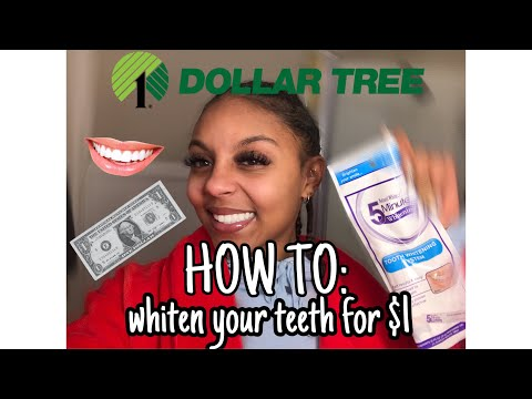 Whitening My Teeth For $1 || Dollar Tree Challenge ||