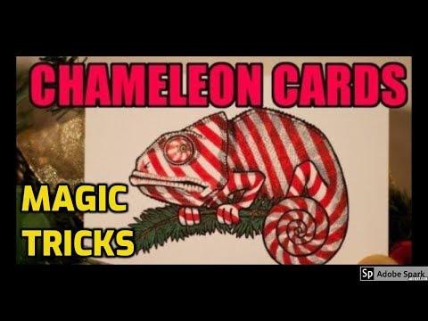 ONLINE MAGIC TRICKS TAMIL I ONLINE TAMIL MAGIC #194 I Chameleon cards