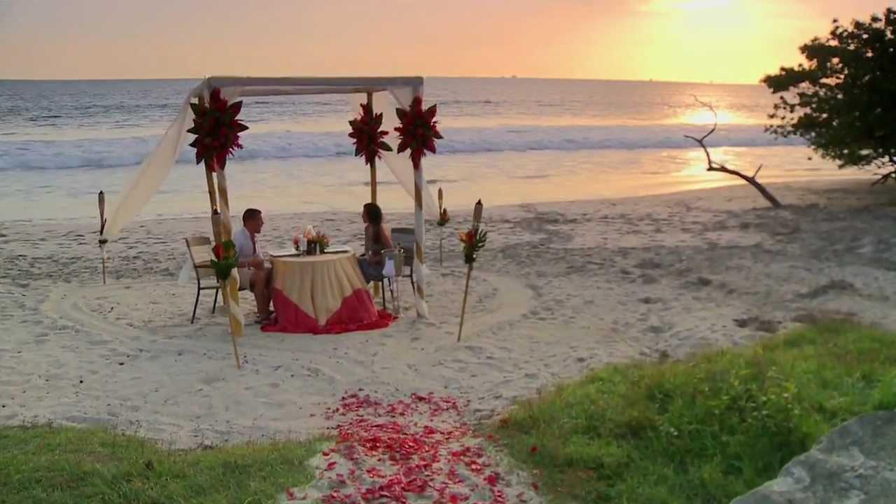 Flamingo Beach Resort Spa Guest Review Video You