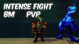 Intense Fight - 8.0.1 Beast Mastery Hunter PvP - WoW BFA