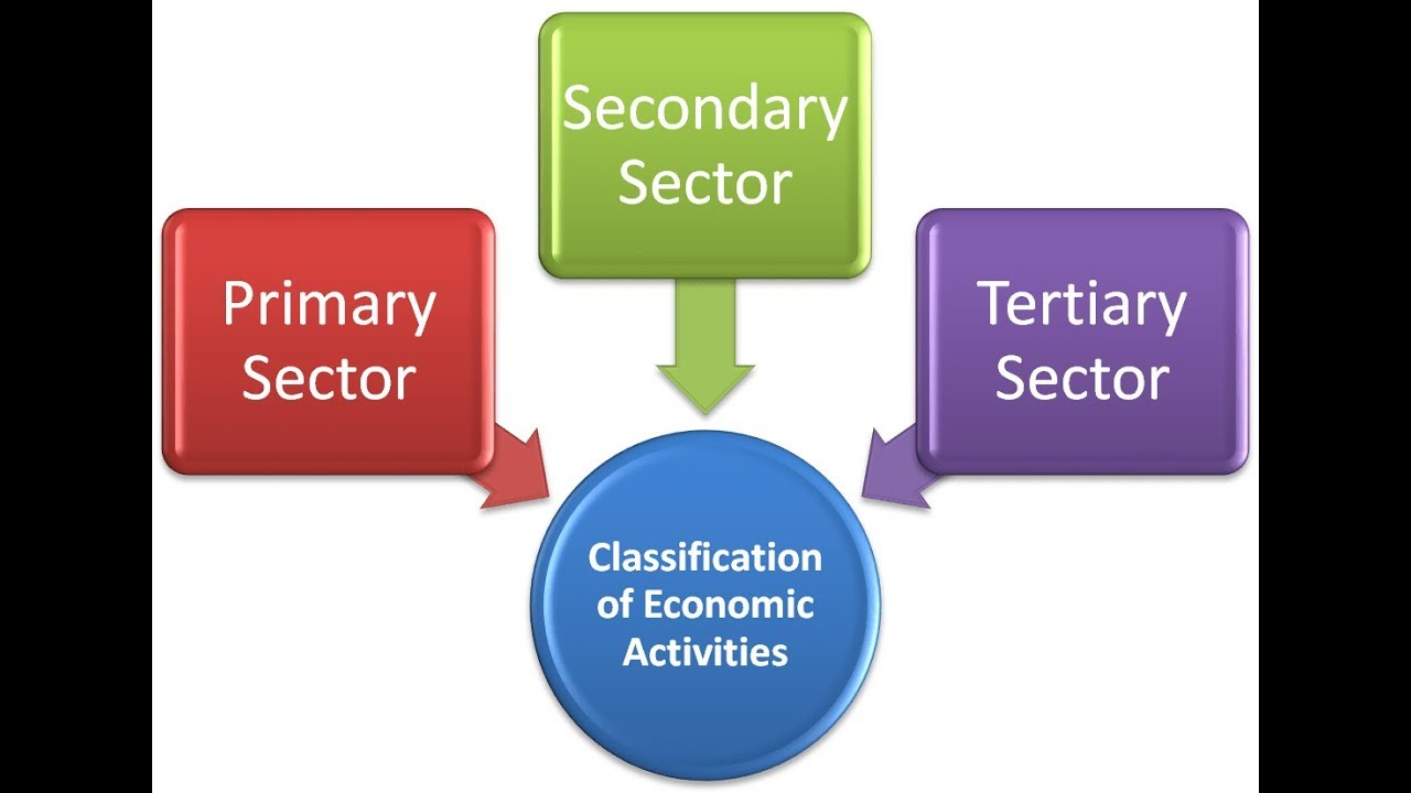 primary sector secondary sector tertiary sector essay The three economic sectors represent a chain of production, from extracting the raw materials (primary) through manufacturing (secondary) and finally to servicing the end consumers (tertiary) each sector relies on the others to function properly within the economy.