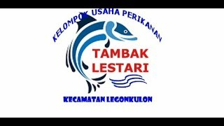 Acara Panen Raya Udang Vaname TAMBAK LESTARI LEGON KULON 2018