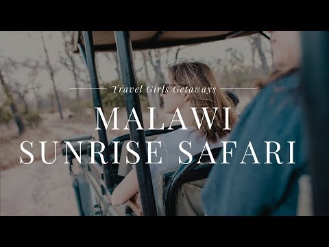 Travel Girls Getaways Malawi Sunrise Safari & Breakfast In The Bush