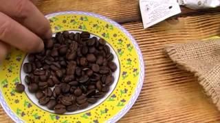 "Рассматриваю кофе - KILIMANDJARO. | Overview coffee - KILIMANDJARO."""
