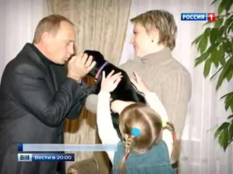 Смотреть Путин подарил щенка лабрадора тобольской школьнице онлайн