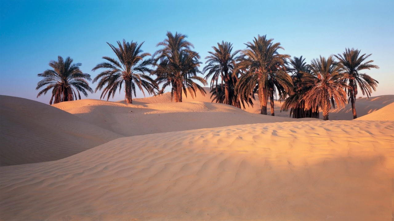 Tunisia Folk Music