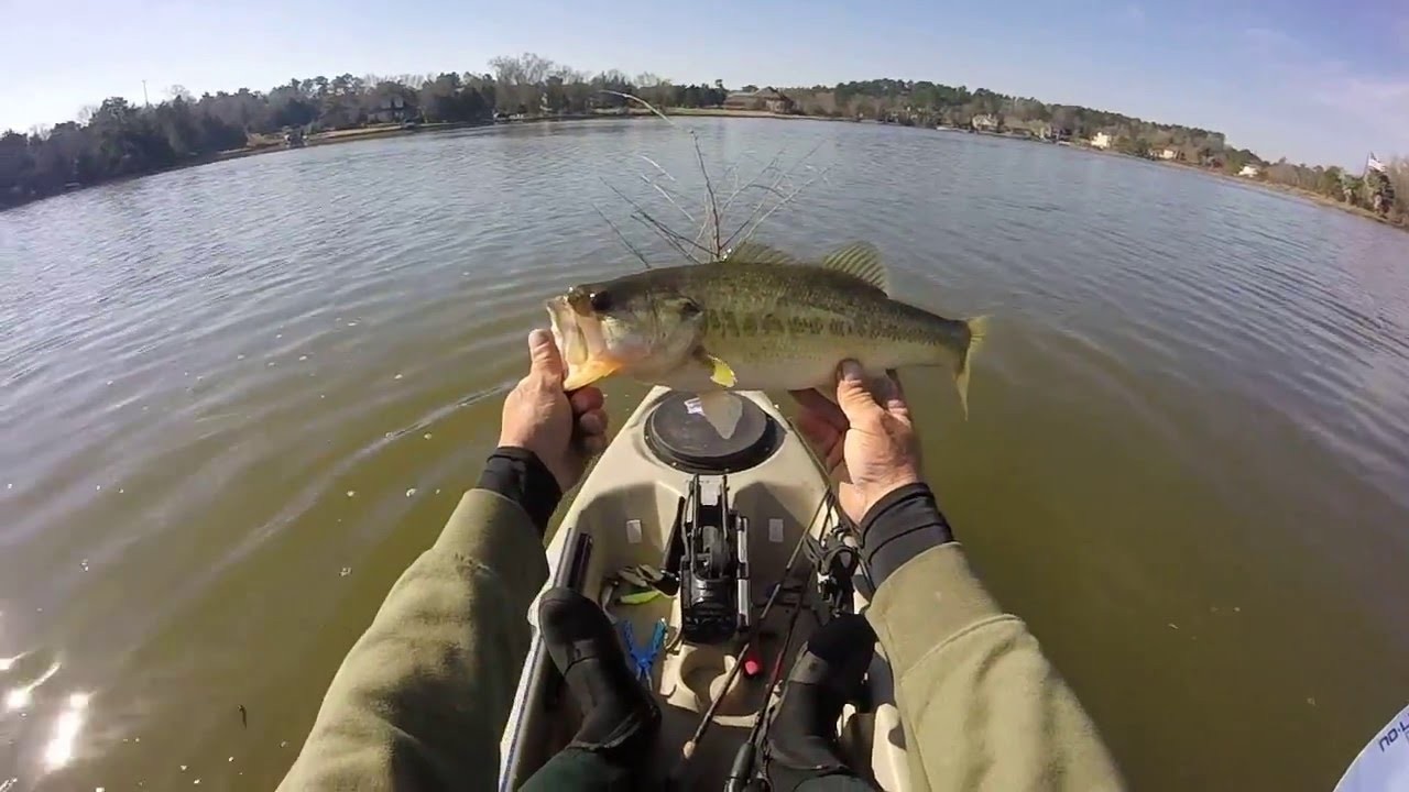 Fishing lake conroe 2 7 16 youtube for Lake conroe bass fishing