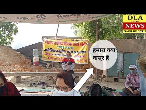 Haryana PTI teacher news
