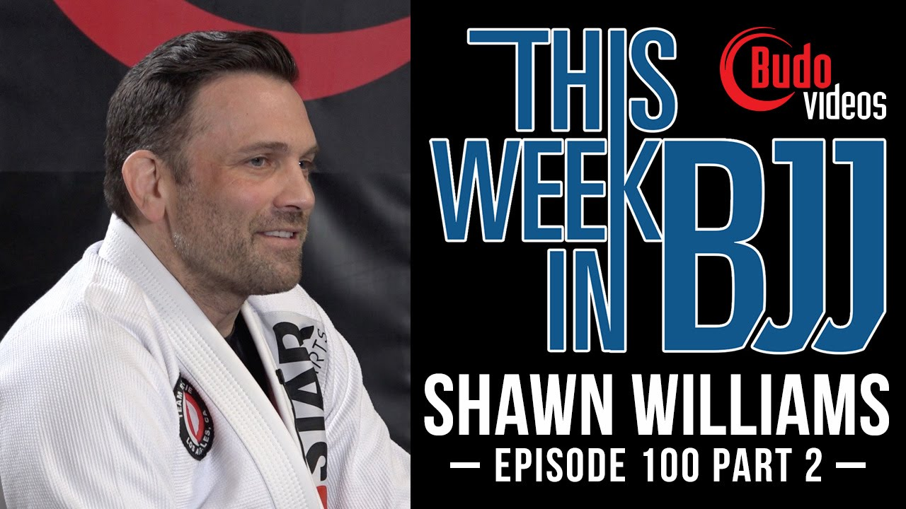 Watch Shawn Williams Talk Tonon vs  Palhares, John Danaher