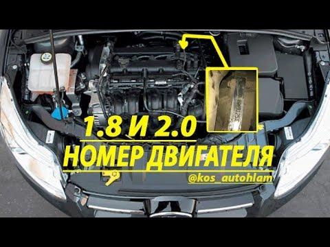 Номер двигателя форд фокус2 1.8 и 2.0/serial number engine Ford Focus2 1.8 and 2.0