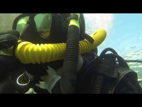Brighton Marina Dive