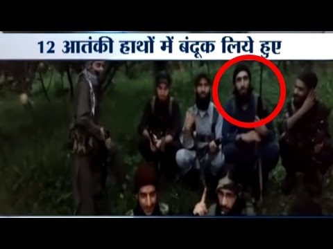 Viral Video:  Hizbul Mujahideen militants Pose With Weapons Snatched From Police