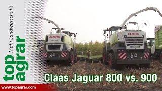 Systemvergleich: Claas Jaguar 800 und 900