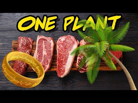 The Only Plant Carnivore Dieters Can Safely Eat