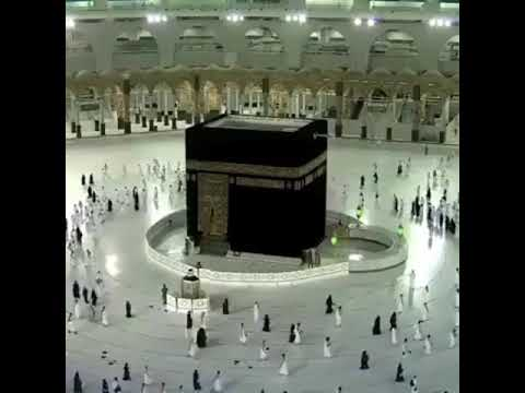 Pemerintah Kerajaan Arab Saudi (KSA) melalui Menteri Haji dan Umroh Muhammad Saleh Banten menyatakan.