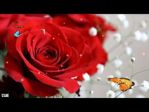 Love Can Make Your Heart Go Crazy 梦醒时分 (English version) - Lyrics HD 1080p