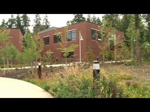 Pierce College Ft  Steilacoom & Puyallup Campuses