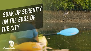 Kayak through Mangrove National Park | Visit Abu Dhabi