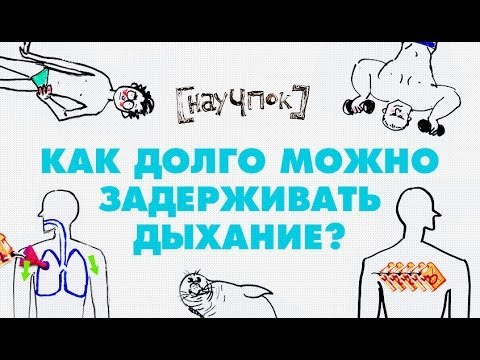 как долго можно пить статины