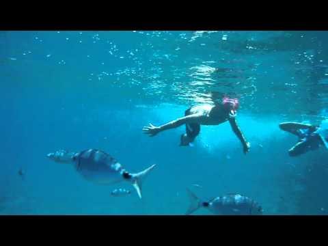 Scuba diving France Monaco