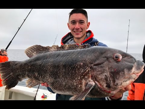 BIGGEST BLACKFISH EVER CAUGHT ON VIDEO *17 & 21 1/2 POUNDS*
