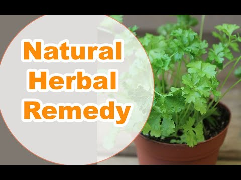 A Natural Herbal Remedy Could Be Your Answer