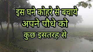 bagicha in hindi Bagicha news in hindi:चूंदापाठ में आयोजित हुआ भोजपुरी विरहा, रात भर झुमते रहे दर्शकचूंदापाठ में आयोजित हुआ भोजपुरी विरहा, रात भर झुमते रहे दर्शक.