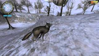 Hunting Unlimited 2011 №5-справляємо помилки(3)
