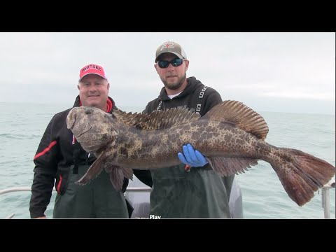 Alaska Yellow Eye & Lingcod Fishing