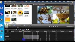 Видеоурок  Видеоурок  Camtasia Studio 8