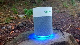 Колонка Uniscend Tappy - недорогая, но качественная, с отличным звучанием