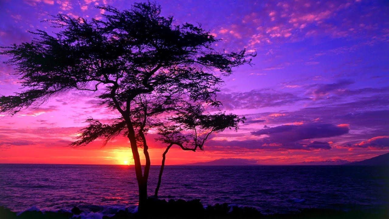 Love Of God | Sax Worship Instrumental | Christian Music For Prayer | Hymns