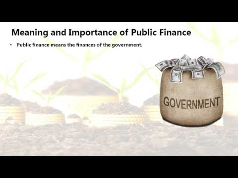 Public Finance And Budget (Economics)