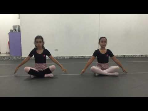 Aula Ballet Iniciante - Exercício de Port de Bras
