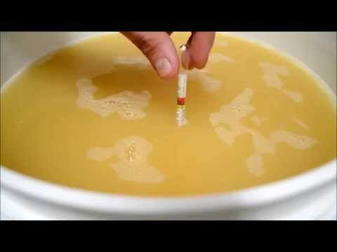 How to make a one month Mead BOMM