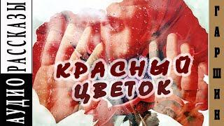 Всеволод Гаршин. Красный цветок|   🎧   Аудио рассказ