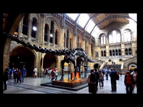 London Sept 2016   Tag 3   Natural History Museum, Buckingham Palace