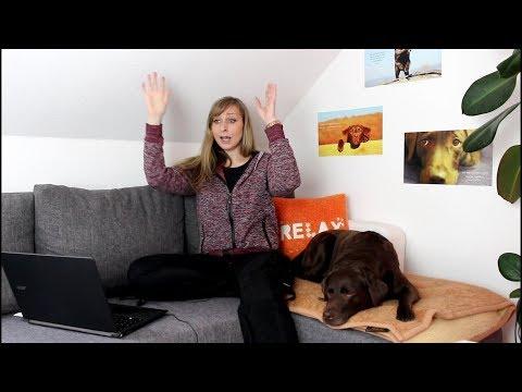 Hundeerziehung - Leserfragen - Hilfe, mein Hund frisst Kot!