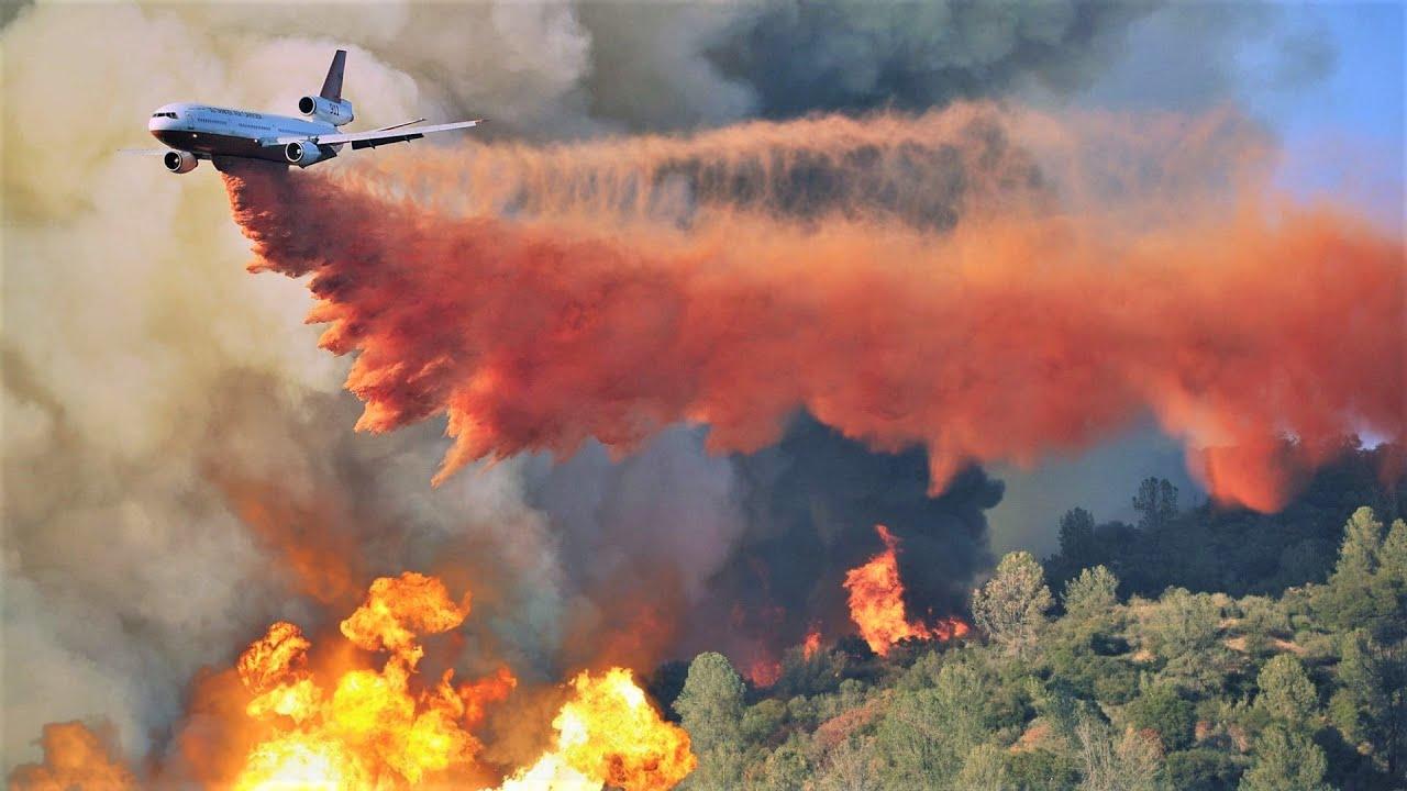 Вся правда про Лесные Пожары в России